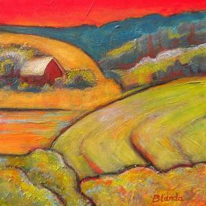 Orange Sky Farm by Blenda Tyvoll