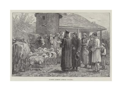 Blessing Domestic Animals, Bulgaria-Johann Nepomuk Schonberg-Giclee Print