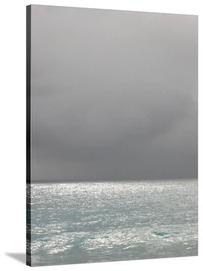 Bleu 6-Brian Leighton-Stretched Canvas Print