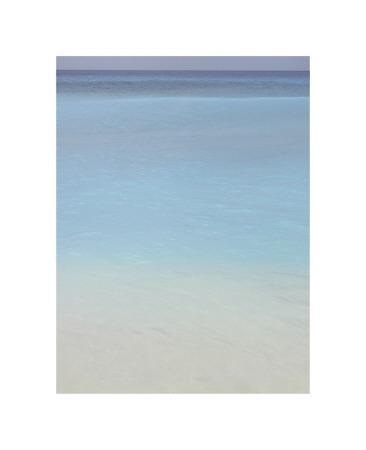 https://imgc.artprintimages.com/img/print/bleu-no-2_u-l-f4e0nl0.jpg?p=0