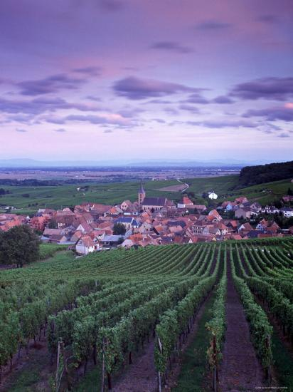 Blienschwiller, Alsace, France-Doug Pearson-Photographic Print