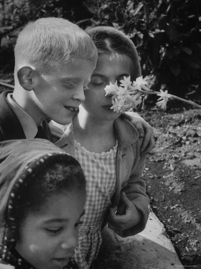 Blind School Children During an Outing in Brooklyn Botanical Gardens of Fragrance-Lisa Larsen-Photographic Print