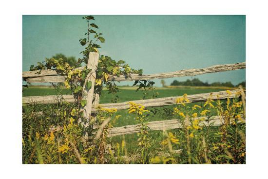Blissful Country V Crop-Elizabeth Urquhart-Art Print