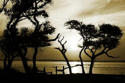Blissful Shore I-Alan Hausenflock-Photographic Print