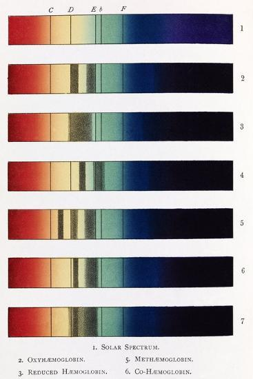 Blood Spectra, 19th Century Artwork-Middle Temple Library-Photographic Print