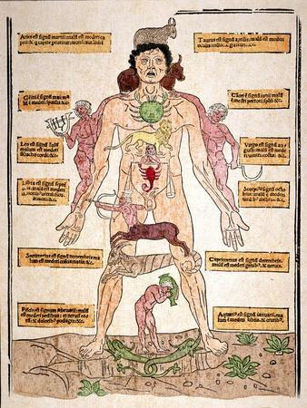 https://imgc.artprintimages.com/img/print/bloodletting-chart-1493_u-l-pfcc7b0.jpg?p=0