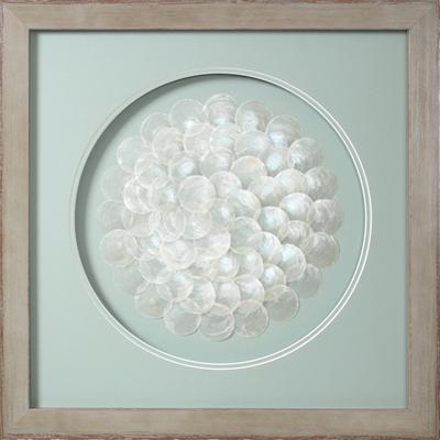 Blooming Capiz Shells - Medium