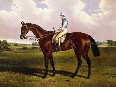 Bloomsbury, a Chestnut Racehorse with Sam Templeman Up, in a Landscape-Alfred de Prades-Giclee Print
