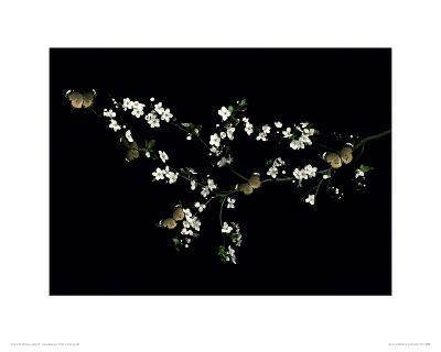 Blossom & Butterflies-Ian Winstanley-Giclee Print