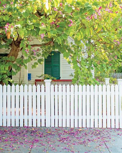 Blossom Cottage-Brookview Studio-Photo