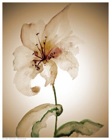 https://imgc.artprintimages.com/img/print/blossom-in-sienna-ii_u-l-f68byw0.jpg?p=0