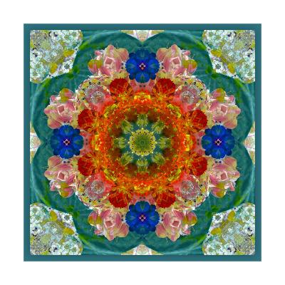 Blossom Mandala XI-Alaya Gadeh-Art Print