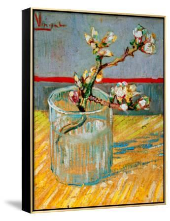 Blossoming Almond Branch in a Glass, c.1888-Vincent van Gogh-Framed Canvas Print