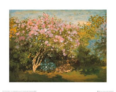 Blossoming Lilac in the Sun, c.1873-Claude Monet-Art Print