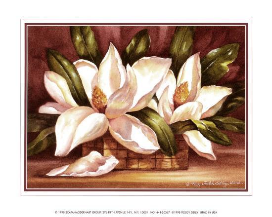 Blossoming Magnolias-Peggy Thatch Sibley-Art Print
