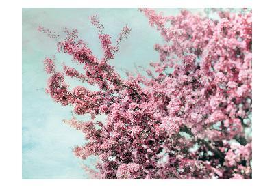 Blossoming Spring-Tracey Telik-Art Print