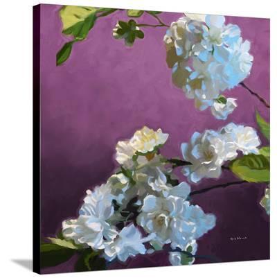 Blossoms 07-Kurt Novak-Stretched Canvas Print
