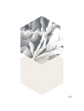 https://imgc.artprintimages.com/img/print/blossoms-iv-v2_u-l-q1guwck0.jpg?p=0