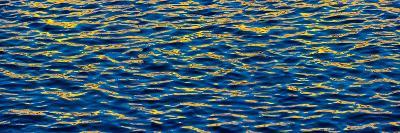 Blue and Gold-Steve Gadomski-Photographic Print
