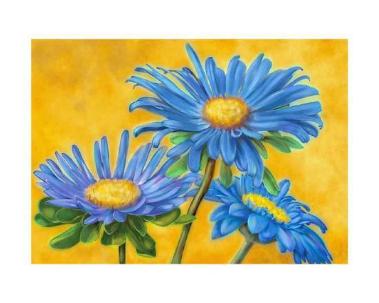 Blue Asters-M^ De Flaviis-Art Print