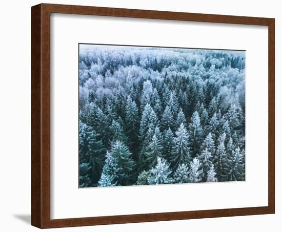 Blue Background Texture of a Frozen Forest at Winter, Aerial Shot--Framed Photographic Print