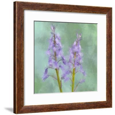Blue Bells-Cora Niele-Framed Giclee Print