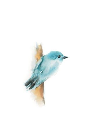 https://imgc.artprintimages.com/img/print/blue-bird-i_u-l-q13if290.jpg?p=0