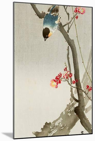 Blue Bird on a Plum Tree-Koson Ohara-Mounted Premium Giclee Print