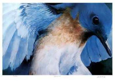 Blue Bird-Carl Arlen-Collectable Print