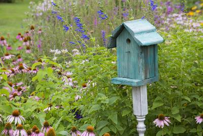 Blue Birdhouse in Flower Garden with Purple Coneflowers and Salvias, Marion County, Illinois-Richard and Susan Day-Photographic Print