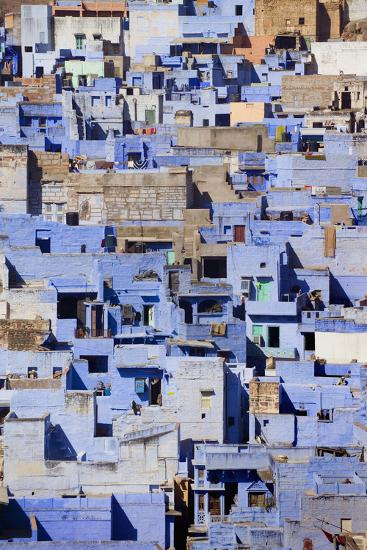 Blue Buildings of Jodhpur, Aerial View-Design Pics Inc-Photographic Print