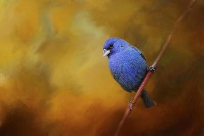 Blue Bunting in Autumn-Jai Johnson-Giclee Print