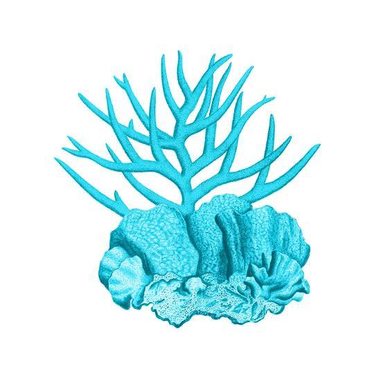 Blue Coral 1-Sheldon Lewis-Art Print