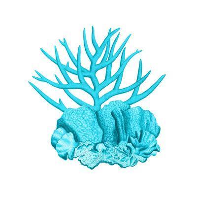 https://imgc.artprintimages.com/img/print/blue-coral-1_u-l-f8reh50.jpg?p=0