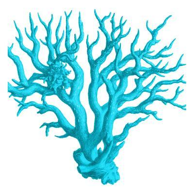 https://imgc.artprintimages.com/img/print/blue-coral-3_u-l-f8reh70.jpg?p=0