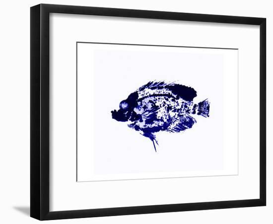 Blue Dapple Fish Print-Rich LaPenna-Framed Giclee Print
