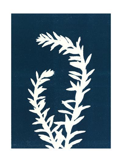 Blue Duo 2-Mary Margaret Briggs-Premium Giclee Print