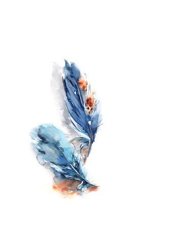 https://imgc.artprintimages.com/img/print/blue-feathers-ii_u-l-q13ie1h0.jpg?p=0