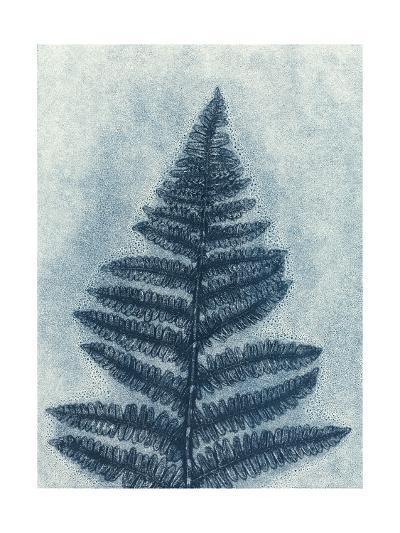 Blue Fern 2-Mary Margaret Briggs-Premium Giclee Print