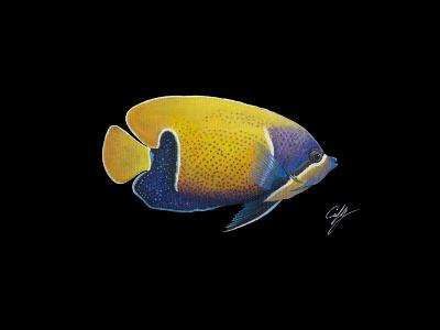 Blue Girdled Angel-Durwood Coffey-Giclee Print