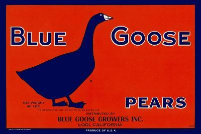 Blue Goose Pears--Giclee Print
