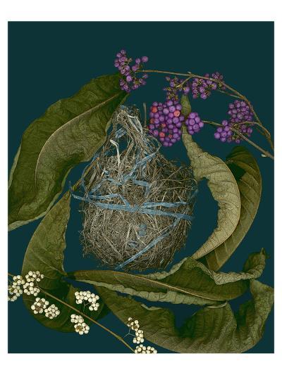 Blue green purple arrangement--Art Print