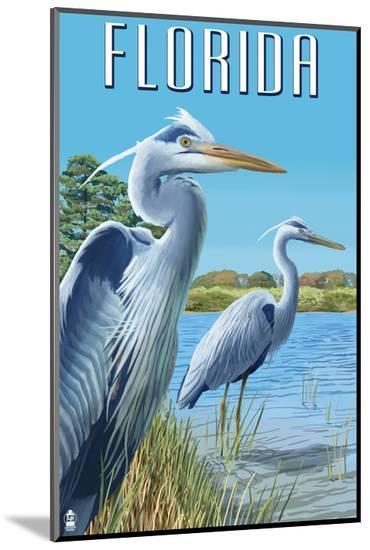 Blue Herons in Grass - Florida-Lantern Press-Mounted Print