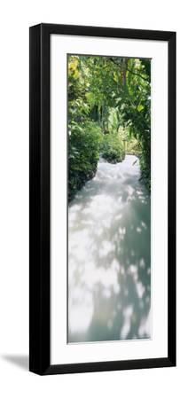 Blue Hole Gardens River, Negril, Jamaica--Framed Photographic Print