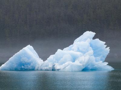 Blue Iceberg from the Sawyer Glacier-Rich Reid-Photographic Print