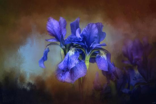 Blue Iris Blooms-Jai Johnson-Giclee Print