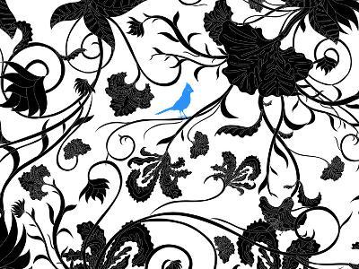 Blue J-darren pearson (dariustwin)-Photographic Print