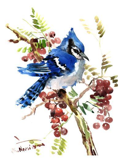 Blue Jay 8-Suren Nersisyan-Art Print