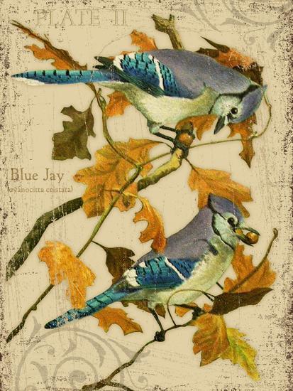 Blue Jay-Kate Ward Thacker-Giclee Print