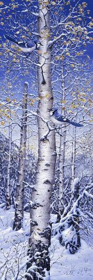 Blue Jay-Jeff Tift-Giclee Print